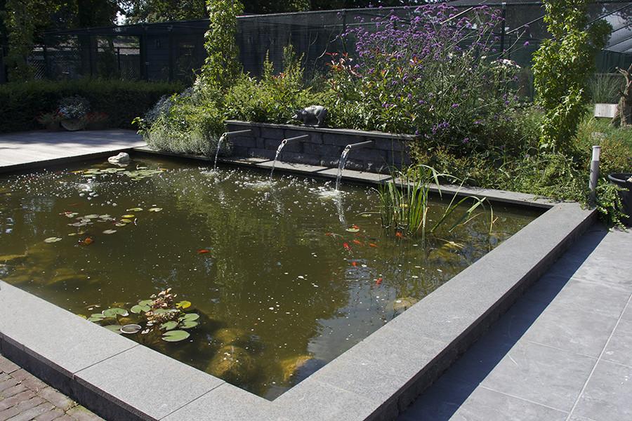 Waterpartijen - Hoveniersbedrijf John Klaassen   Compleet voor uw tuin